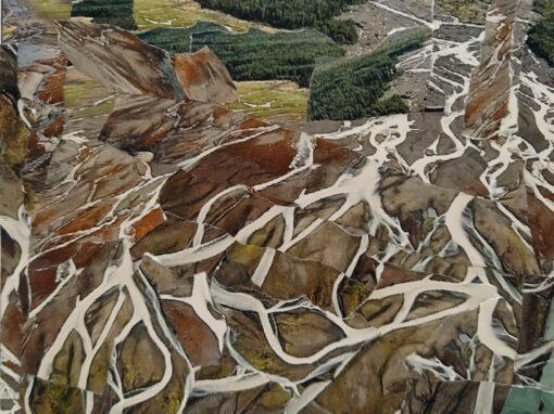 Eridanos delta –  Landschappen in de Stellingwerven